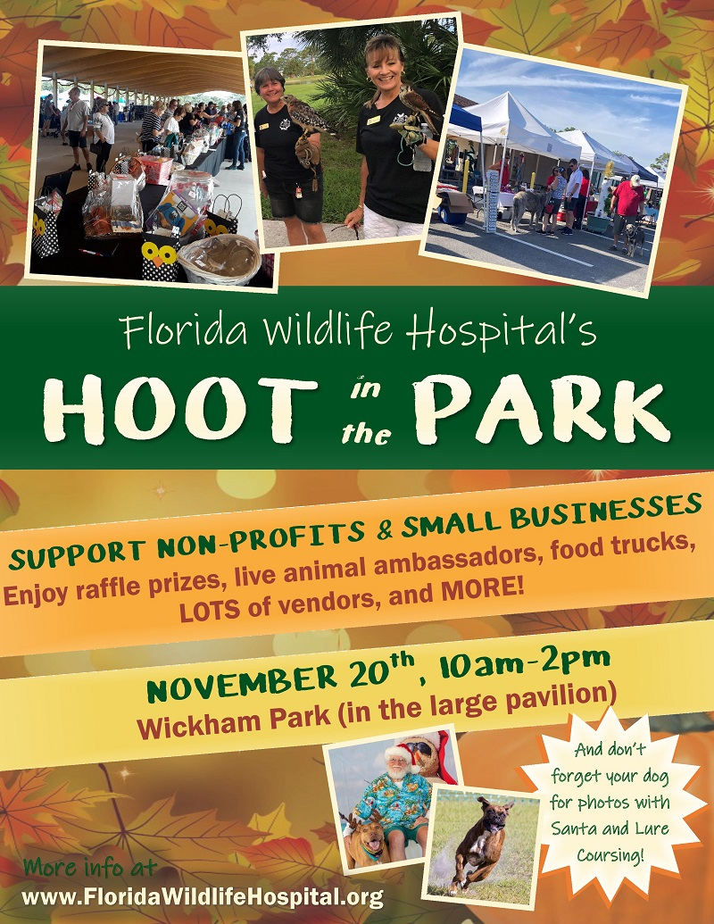 HOOT in the PARK at Wickham Park Large Pavilion hosted by Florida Wildlife Hospital